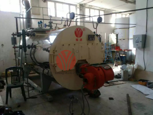 1t/h WNS Series Water Tube Steam Boiler for Egypt Machinery Plant